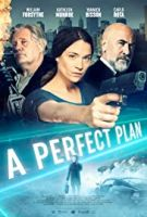image of a perfect plan movie